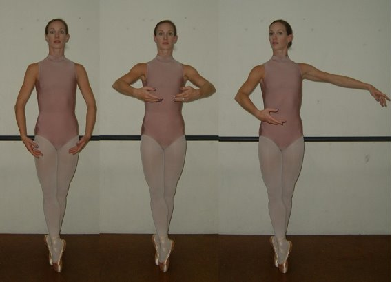 Jayne Smeulders Positions of the Arms